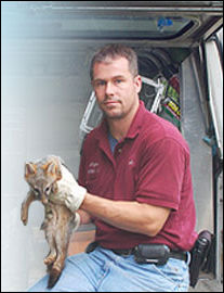 Pest Control and Wildlife Removal Scarsdale, New Rochelle, White Plains, NY